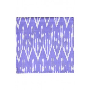 Silk Ikat Pillow 50 x 50 PW Oorbel 1